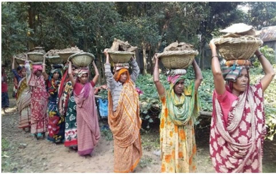 সিরাজগঞ্জে দারিদ্র বিমোচনে কর্মসৃজন