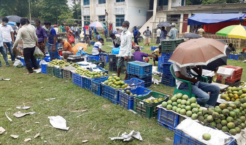 ঠাকুরগাঁওয়ে বাজারে উঠছে আম : করোনার প্রভাবেও দাম বেশি